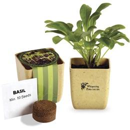 Custom Appreciation Planter with Basil Seeds