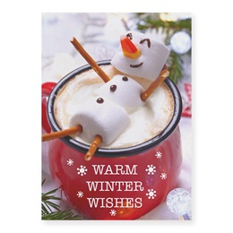 Warm Winter Wishes Deluxe Holiday Cards