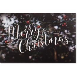 Mistletoe Christmas Holiday Greeting Cards