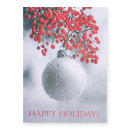 Frosted Bulb Classic Greeting Card