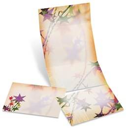 Carnival Fold-Up Invitations