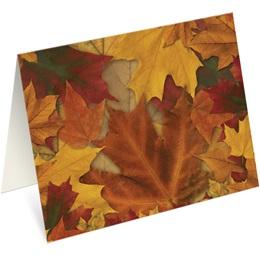 Fall Breeze Notecards