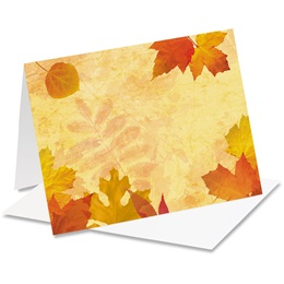 Fall Impressions Notecards