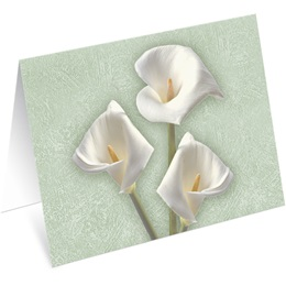 Calla Lilies Notecards