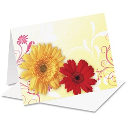 Dancing Daisies Notecards