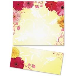 Dancing Daisies LetterTop Certificates