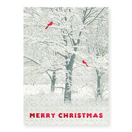 Snowy Trees Boxed Holiday Greeting Cards
