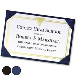 Leatherette Mini Award Boards