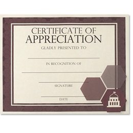 Certificate of Appreciation - Essential Government