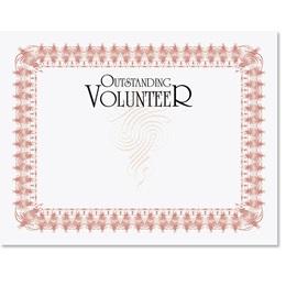Outstanding Volunteer Illustrious Certificates