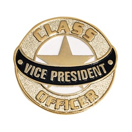 Vice President Lapel Pins