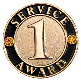 1 Year Service Award Pins