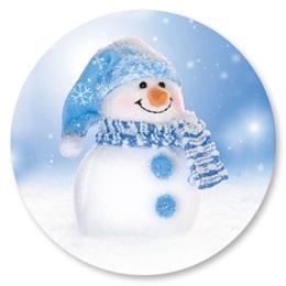 Snowman Seal