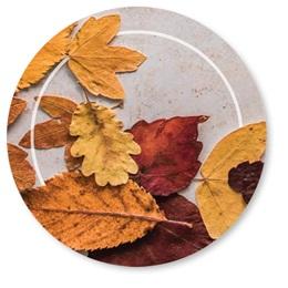 Scattered Golden Leaves Seals