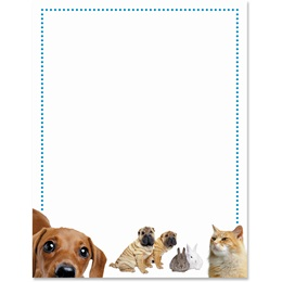 Animal Clinic Border Papers