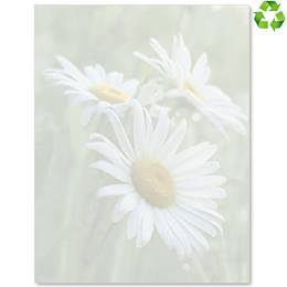 Daisies II Border Papers