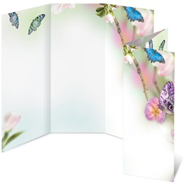 Butterfly Delight 3-Panel Brochure