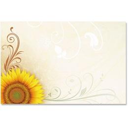 Helianthus Crescent Envelopes