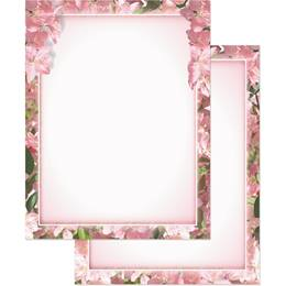 Apple Blossom Newsletters