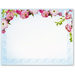 Cherry Blossom Postcards