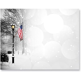 Patriotic Park Scene Postcards