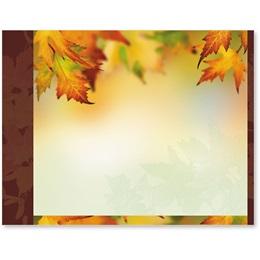 Autumn Maple Postcards