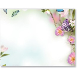 Butterfly Delight Postcards