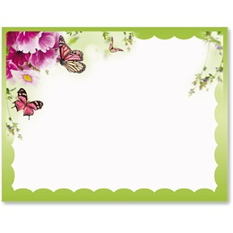Primrose and Butterflies Postcards