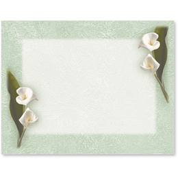 Calla Lilies Printed Postcards