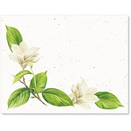 Magnolia Bloom Postcards